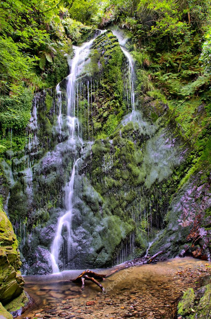 High Dynamic Range - HDR Waterfall in Forrest