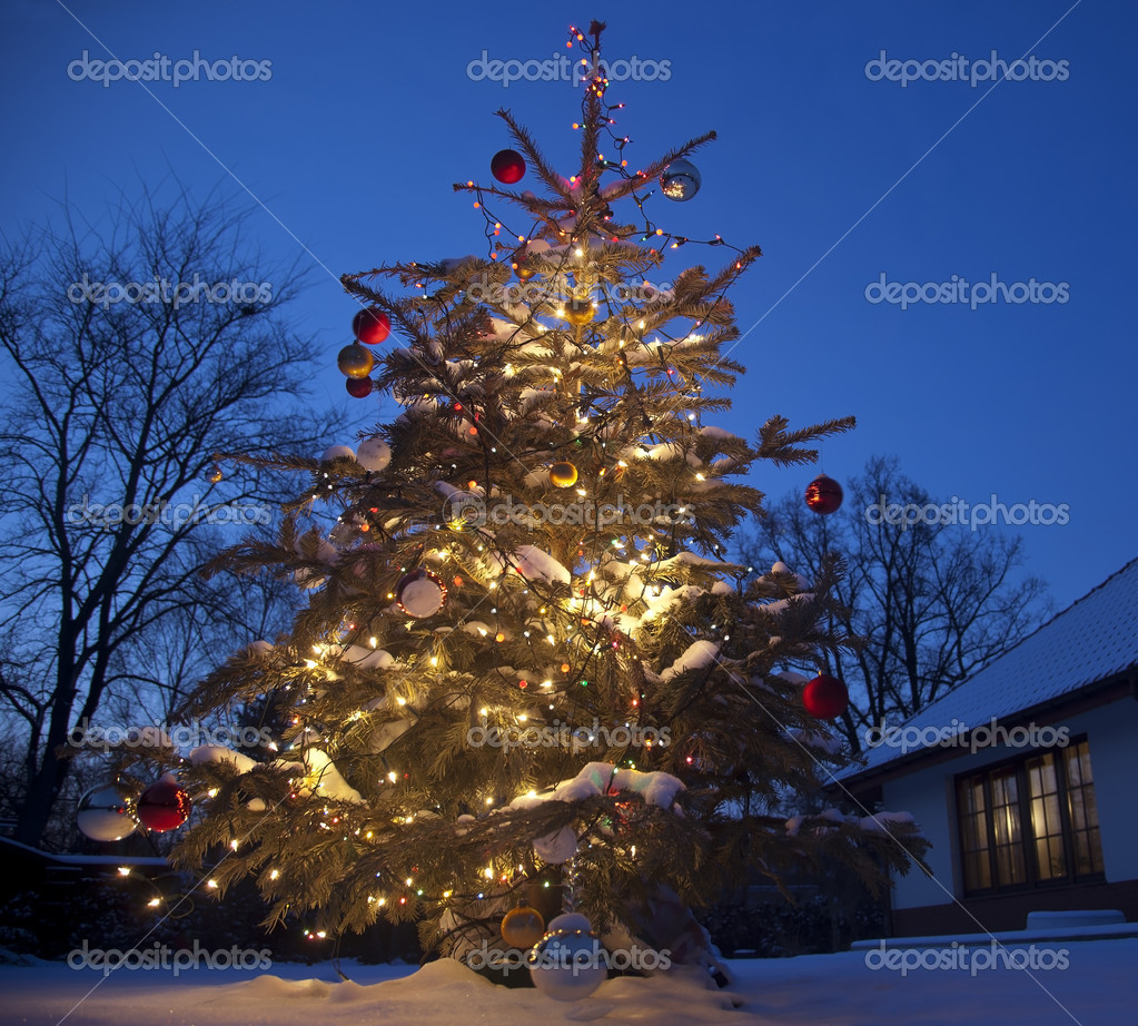 Christmas Tree with home outside