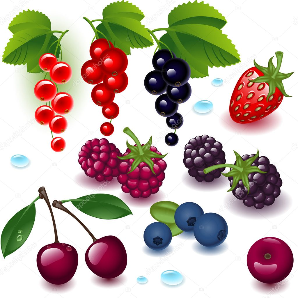 Set berries