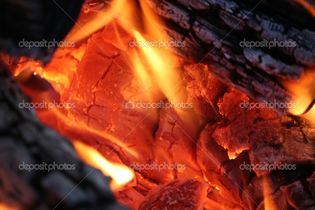 Camp Fire Close Up