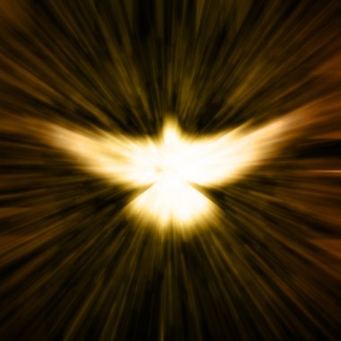 Christian Dove
