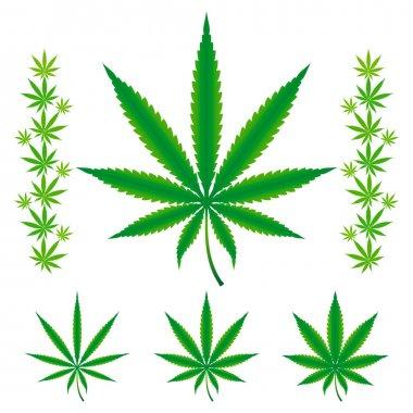 Cannabis leafs - Sativa, Hybrid, Indica.