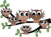 Fotografie A cute owl family
