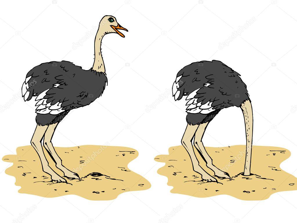 Cartone animato di struzzo con la testa sotto sabbia