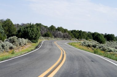 Bend in the Road, High Desert, New Mexico, USA