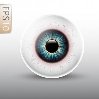 Full Vector Eyeball Illustration stock vector