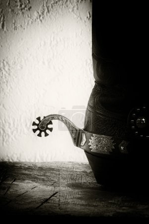 Shoes and spurs.
