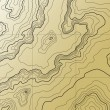 Abstract topographic map in brown colors...