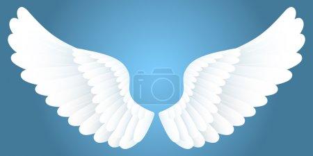 Illustration pour Ailes blanches sur fond bleu . - image libre de droit