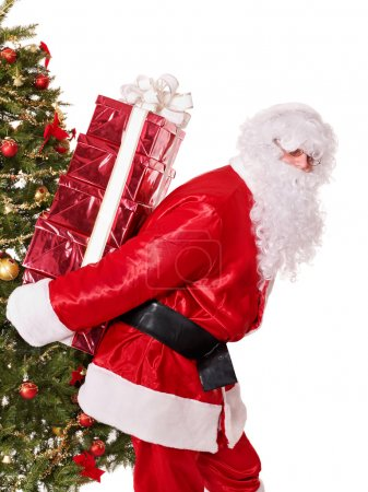 Photo for Santa Claus by christmas tree carrying stack gift box. Isolated. - Royalty Free Image