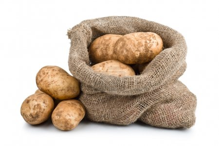 Raw Harvest potatoes in burlap sack