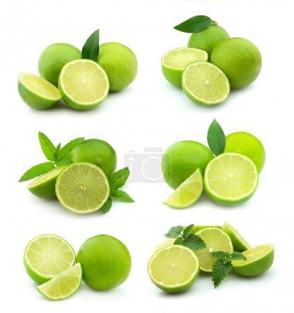 Photo pour Collage de jus de citron vert sur fond blanc . - image libre de droit