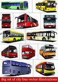 Big set of City buses Tourist coach Vector illustration for designers