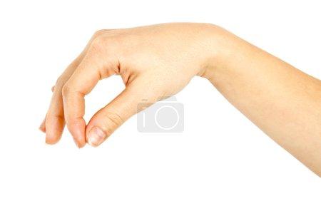 Photo pour La main d'une femme qui cueille - image libre de droit