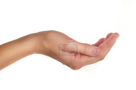 Photo pour Main féminine tenant ou donnant quelque chose isolé sur blanc - image libre de droit