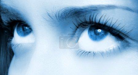 Photo for Human blue eye. macro shooting - Royalty Free Image