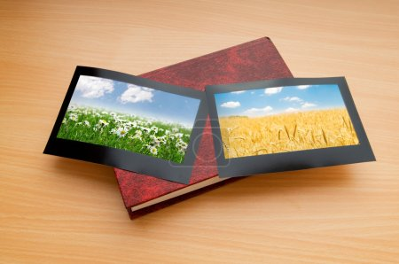 Photo for Picture frames with nature photos - Royalty Free Image