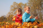 Two children sit on fallen maple leaves