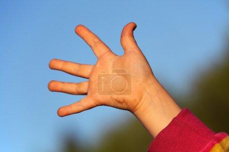 Children's hand against sky