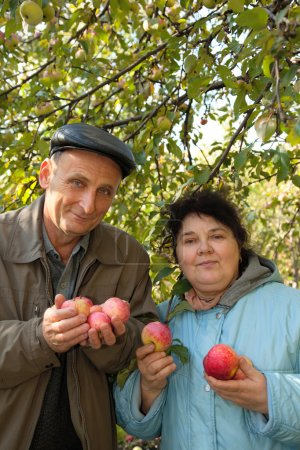 Middleaged man and woman with apples