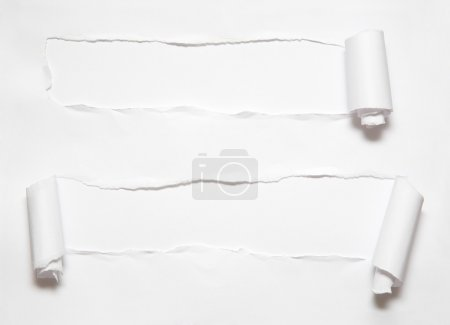 Photo for Roll hole on paper - Royalty Free Image