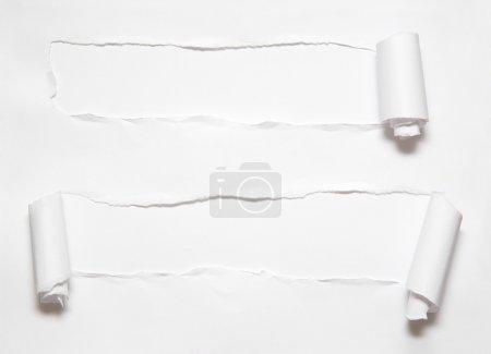 Photo pour Rouleau de trou sur papier - image libre de droit