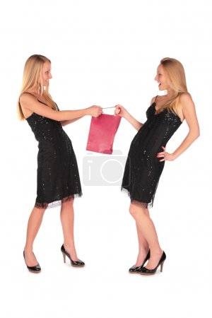 Twin girls fighting for a bag