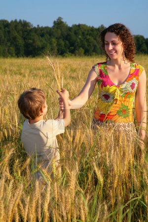Mother gives ears in wheaten field to child