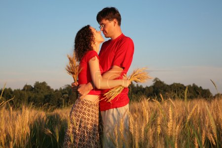 Pair embraces on wheaten field