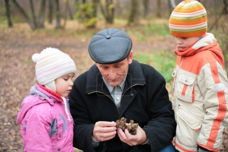 Grandfather with grandsons in wood in autumn
