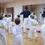 Karate boys training in sport hall, focus on left ...