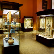 Museum exhibits of ancient relics in glass cases...