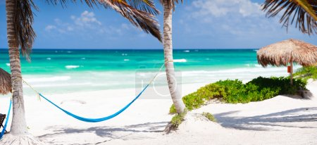 Photo for Beautiful Caribbean coast in Tulum Mexico - Royalty Free Image