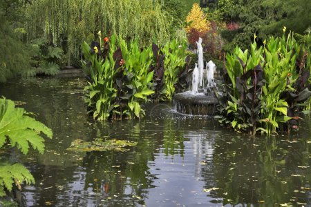 Fountain in a pond.