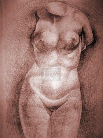 Photo pour Dessin de la femme au crayon - image libre de droit