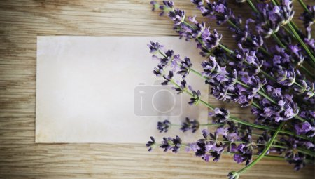 Lavender flowers over wooden background