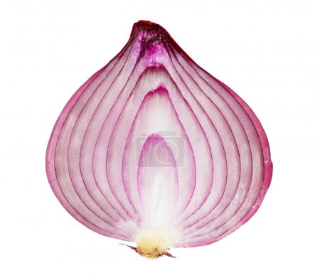 Photo for A red onion, sliced in half, isolated on white background - Royalty Free Image