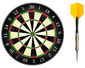 Darts Board Isolated on White Background Vector