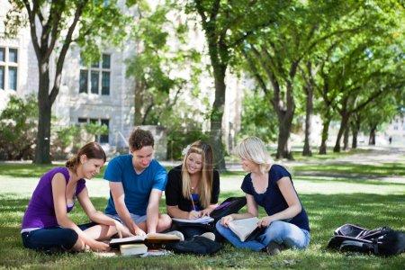 estudiantes universitarios estudiando juntos