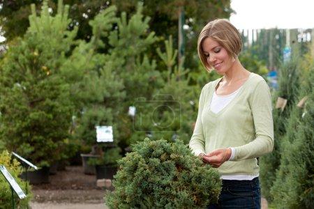 Attractive female purchasing shrub