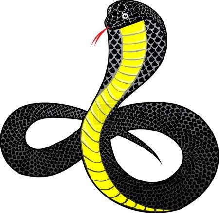 Illustration pour Illustration vectorielle cobra serpent - image libre de droit