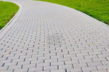Camino de piedra jardín con hierba