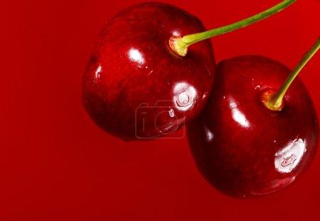 Close up of cherry