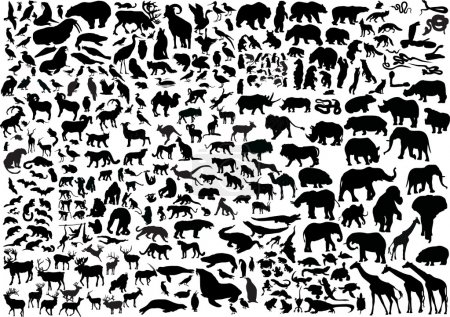 Illustration for Illustration with animals silhouettes collection isolated on white background - Royalty Free Image