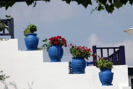 White stairs decorated with red flowers in blue pots Zia Island of Kos Gree