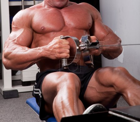 Photo for Bodybuilder training his back - Royalty Free Image