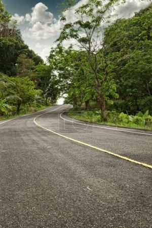 Photo pour Vue panoramique de la couleur de la belle route vide d'été - image libre de droit
