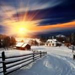 Winter landscape. Mountain village in the Ukrainia...