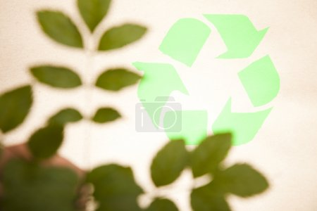 Recycling plant, ecology