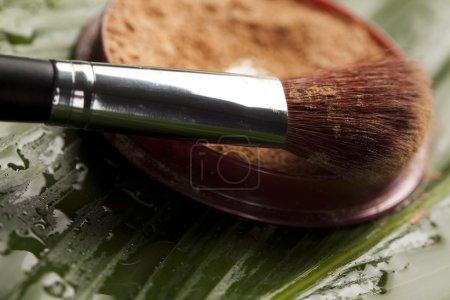 Brushes and face powder, make up